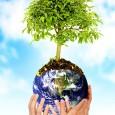 A Comissão Organizadora do Greenmeeting vem mobilizando diversos segmentos da sociedade, tanto no Brasil quanto no exterior para a realização doXI Encontro Verde das Américas que será realizado nos dias20, […]