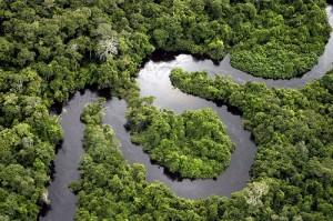 http://br.viarural.com/servicos/turismo/parques-nacionais/dos-campos-amazonicos/default.htm