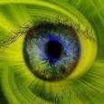 Polêmicas públicas recentes a respeito de temas ambientais (novo Código Florestal), científicos (uso de células tronco para pesquisa) e econômicos (modelo de exploração do petróleo do pré-sal) possuem um traço […]