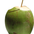 A popularização da água de coco desencadeou um aumento progressivo de seu consumo, onde o apoio da mídia foi fundamental para disseminar a importância e os benefícios que o […]