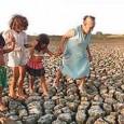Dia Mundial de Combate à Desertifição e à Seca – 17 de junho de 2011 Mensagem do Secretário-Geral da ONU, Ban Ki-moon As pessoas que vivem em terras áridas, que […]