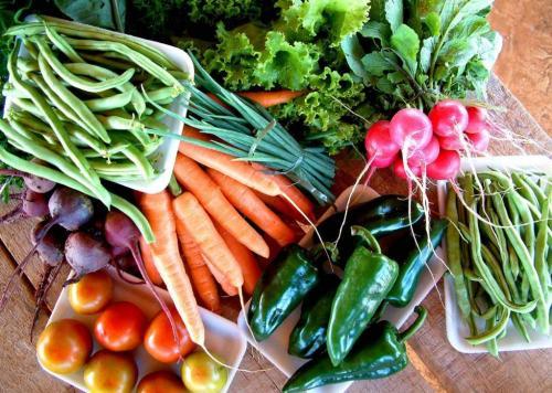 Plano Safra 2011/2012 para agricultura familiar terá R$ 16 bilhões