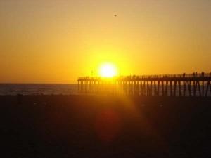 Foto: Patricia Patriota / Local, Hermosa Beach, CA