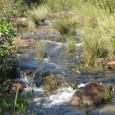 O Projeto Bacias, promovido pela fabricante de bebidas Ambev em parceira com o WWF-Brasil, compilou os primeiros resultados do mapeamento da microbacia do Córrego Crispim, em Brasília, e o plano […]