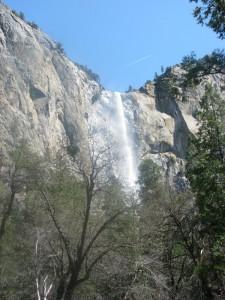 Foto: Patricia Patriota / Local: Yosemite, Califórnia