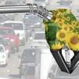 Empresas e governo pesquisam biocombustível para aviões, que deve estar no mercado em dez anos; meta é reduzir as emissões de gases-estufa A busca por combustíveis mais sustentáveis chegou à […]