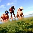 O movimento intenso de turistas que buscam sol e paisagens paradisíacas na praia de Porto de Galinhas, em Ipojuca (litoral sul de Pernambuco), tem provocado danos ambientais à região. Parte […]