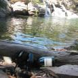 foto:Patricia Patriota As ÁGUAS recebem continuamente Grande Partes dos Resíduos TÓXICOS que são produzidos pelas Atividade Humanas e as Atividades da Própria Natureza, com isso as ÁGUAS dos Córregos, como […]