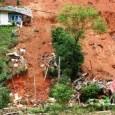 Áreas de Preservação Permanente X Áreas de Risco – o que uma coisa tem a ver com a outra? Na semana decisiva para o Código Florestal Brasileiro, o Ministério do […]
