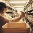 Computadores e tecidos cultivados em laboratórios estão, aos poucos, substituindo os animais nas pesquisas científicas Desde sábado, o site de VEJA publicou uma série de entrevistas com especialistas que discutiram […]