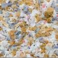 O Tribunal de Justiça derrubou, em caráter liminar, a lei que proíbe a distribuição de sacolinhas plásticas em supermercados na cidade de São Paulo. A decisão foi tomada na quarta-feira […]