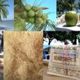 A riqueza do coco não se resume à água. Os resíduos da fruta podem construir até bancos de carros O Brasil consome 500 milhões de litros de água de coco […]