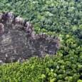 O desmatamento na Amazônia deve reverter sua tendência de queda em 2011. Dados do Inpe (Instituto Nacional de Pesquisas Espaciais) divulgados nesta terça-feira mostram que o acumulado do ano até […]