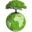 A Política Nacional de Resíduos Sólidos (Lei 12.305/2010 e Decreto 7.404/2010) estabeleceu diversos instrumentos econômicos e condições de acesso aos recursos dos poderes públicos. Podem ser instituídas medidas indutoras e […]