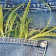 Com certeza há um par de jeans no seu armário. Afinal, pelo menos 1,5 bilhão dessas calças azuis e desbotadas são produzidas todo ano no mundo. Mas você sabe quanto […]