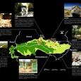 O projeto, existente no Cariri, deverá ter a renovação da chancela do primeiro do gênero nas Américas Juazeiro do Norte.O resultado da primeira avaliação do Geopark Araripe, pela Rede Global […]