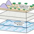 O rio Hamza foi descoberto por acaso e que corre no subterrâneo da Região Norte do Brasil, desembocando no Oceano Atlântico Por baixo do maior rio do planeta, o Amazonas, […]