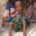A FOME no Chifre da África é causada pela seca e a guerra civil que, há décadas,devasta aquela região do continente.  A Organização das Nações Unidas para Agricultura e […]