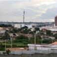 Ao completar 50 anos, em janeiro de 2011, Paragominas, no nordeste do Pará, também comemorou a retirada da cidade do mapa do desmatamento, e apostou em um futuro que se […]