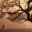 Os cenários climáticos à primeira vista tão contrastantes de incêndios e clima seco em Estados do Centro-Oeste e Sudeste do país e de chuvas e alagamentos em Santa Catarina, na […]