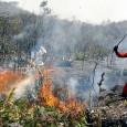 Um incêndio de grandes proporções está devastando uma área de proteção ambiental na região da Chapada Diamantina, no sudoeste da Bahia. A Reserva particular de proteção natural fica na serra […]
