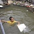 A intensa urbanização, o pouco planejamento na organização das cidades e a redução da vegetação põem em xeque os países do Sudeste Asiático e do Pacífico, que sofrem com os […]