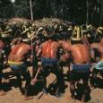 Os indígenas bolivianos que marcham há mais de um mês contra a construção de uma estrada seguem os passos de nativos de Brasil, Equador e Peru para defender a Amazônia, […]