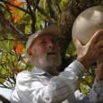 Dedicado há décadas à causa ambiental, o artista/ativista chega aos 90 anos a todo vapor na defesa incansável pela preservação da natureza. Dessa vez, quer fazer um novo chamado global […]