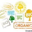 O consumo de produtos orgânicos está em alta. Apesar de, via de regra, serem bem mais caros do que os alimentos cultivados de forma tradicional, estima-se que nos últimos anos […]