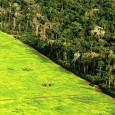 Iniciativa internacional de países europeus e sul-americanos, que inclui o Brasil, vai criar um sistema de alerta para a degradação da Amazônia Uma equipe de cientistas de 14 instituições de […]