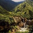 Índice do país é quase cinco vezes maior que a média da América Latina O Equador possui a taxa de desmatamento mais alta da América Latina, com uma perda anual […]