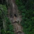 Belo Horizonte — O projeto está sendo desenvolvido há oito anos pelo Instituto Nacional de Pesquisas da Amazônia (Inpa). Há cerca de dois, o Instituto Nacional de Metrologia, Qualidade e […]