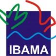 O Senado aprovou ontem por 49 votos a 7 um projeto de lei que, na prática, tira do Ibama o poder de multar desmatamentos ilegais. O projeto regulamenta o artigo […]