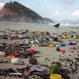 O Ministério do Meio Ambiente (MMA) deu início, à etapa carioca da campanha nacional Mês do Consumo Sustentável, com a presença do superintendente de Políticas de Saneamento, da Secretaria do […]