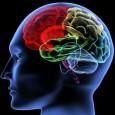 Washington –Cientistas americanos anunciaram nesta segunda-feira (3/10) ter criado camundongos autistas, eliminando um grupo de seus genes, com a esperança de avançar no diagnóstico e no tratamento desta doença em […]