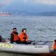 Para dirigentes, essa é a estratégia mais eficaz para despertar o interesse dos governantes O Greenpeace deu lições de desobediência civil a potenciais militantes neste fim de semana para comemorar […]