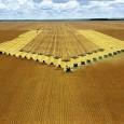 O Brasil tem 24,1 milhões de hectares de soja, dos quais 1,94 milhão de hectares estão no bioma Amazônico São Paulo – Praticamente dobrou a área plantada comsojano bioma Amazônia […]