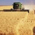 A safra nacional de cereais, leguminosas e oleaginosas deve chegar a 159,4 milhões de toneladas e ser 6,6% maior que a safra recorde, colhida em 2010 (149,7 milhões de toneladas). […]