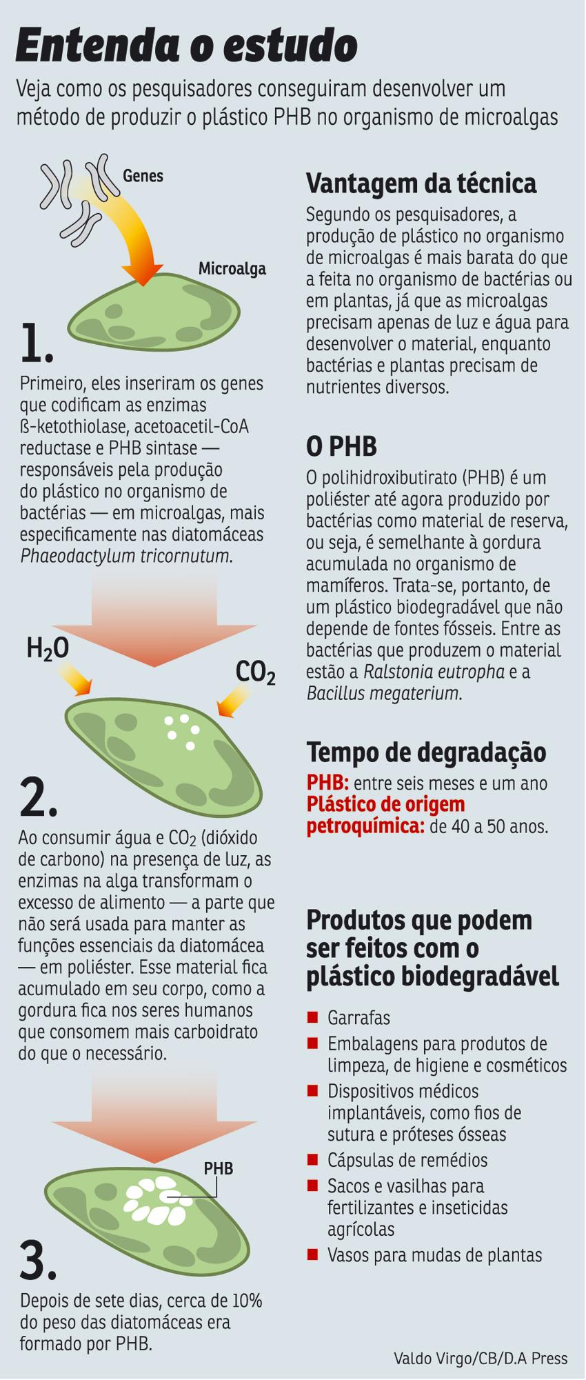 Nami Natural Gas