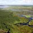 A Comissão da Amazônia, Integração Nacional e de Desenvolvimento Regional realizará nesta terça-feira (1º) audiência pública para discutir a alteração dos limites do Parque Nacional de Mapinguari, prevista na Medida […]