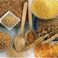 Composta, geralmente, por farelo de trigo, extrato de soja, linhaça, açúcar mascavo, aveia, gergelim, gérmen de trigo, colágeno, castanha do Brasil, guaraná, levedo de cerveja e cacau, essa mistura pode […]