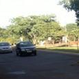 Um morador de Campo Grande registrou em imagens, nesta semana, o momento em que um quati retirou, do meio da rua, outro exemplar da espécie que havia sido atropelado. Segundo […]