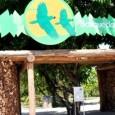 O Parque Ecológico Bosque dos Papagaios, atendido pela Prefeitura de Boa Vista, é uma área de 12 hectares de conservação ambiental localizada em ambiente urbano, e é a principal ferramenta […]