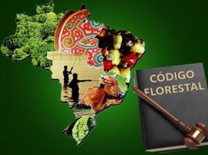 Comissão do Senado aprova texto-base do Código Florestal
