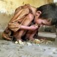 Um relatório sobre segurança alimentar e nutricional aprovado pelo Conselho de Defesa dos Direitos da Pessoa Humana (CDDPH) será apresentando amanhã (7) durante a 4ª Conferência Nacional de Segurança Alimentar […]