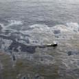 Dano ambiental causado pela mancha de óleo é difícil de mensurar: no acidente no Golfo do México, em 2010, chegaram ao litoral as carcaças de apenas 2% dos animais atingidos […]