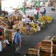 Na área metropolitana do Rio de Janeiro, os pequenos produtores da Região Serrana produzem mais da metade da oferta de folhosas. A produção é variada e inclui vários tipos de […]