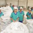 A presidente Dilma Rousseff assinou recentemente um decreto que incentivará a reciclagem nacional. O estipulado é que a partir de agora, empresas que usarem materiais reciclados como matéria-prima para a […]