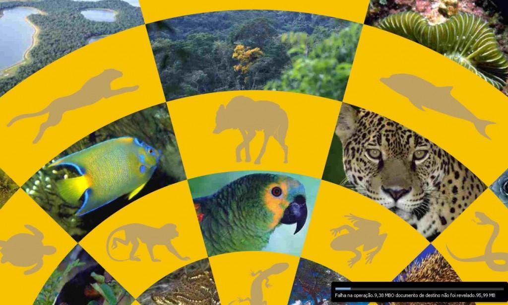 MMA abre consulta pública para o plano sobre biodiversidade