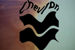Chevron errou ao demorar um dia para inspecionar poço, diz ANP